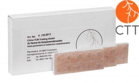 Ohrdauernadeln Typ Reissnägelchen, 0.20 x 1.5mm, 100 Stk