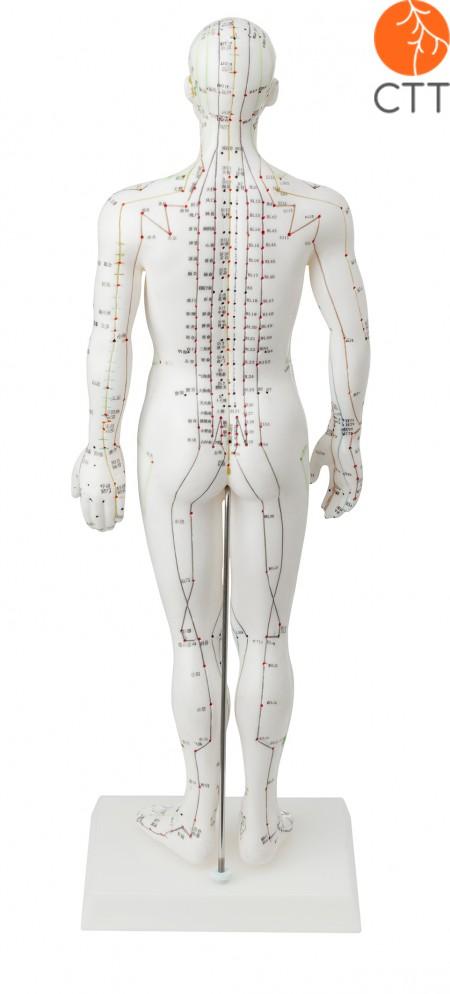 Puppe männlich, 50cm, Hartplastik, weiss mit chin. u. engl. Beschriftung