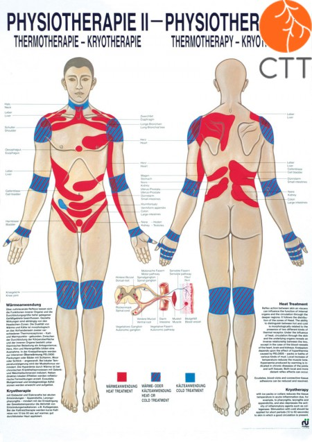 Poster Physiotherapie II
