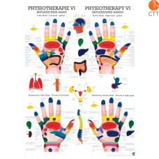 Poster Physiotherapie VI